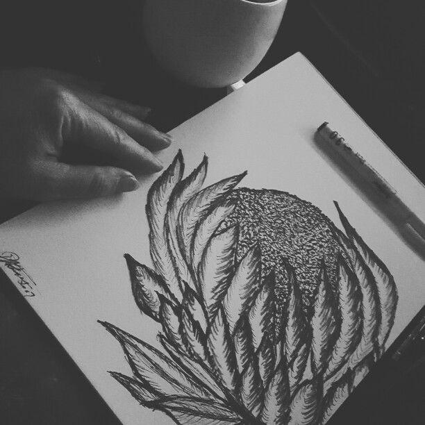 Doodln protea #protea