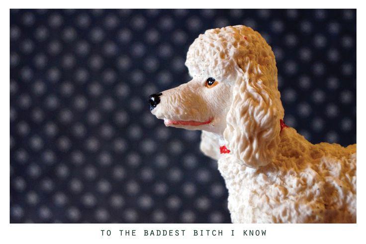 to the baddest bitch I know