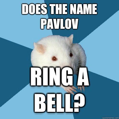 DOES THE NAME PAVLOV RING A BELL?  Psychology Major Rat