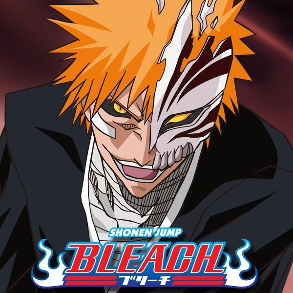 Bleach: Season 8