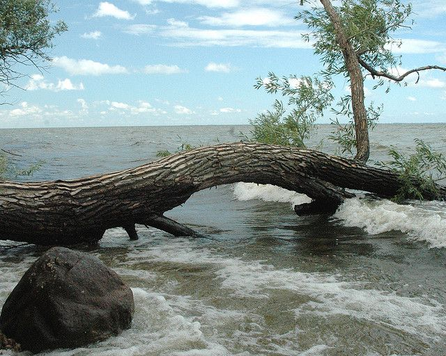 101 best images about lake winnebago on pinterest parks for Best shore fishing in wisconsin