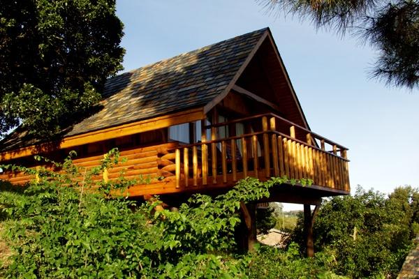 Honeymoon Destinations Abalone Lodge Knysna