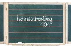 Homeschooling can be an extremely worthwhile experience, both for the parents and the children involved. However, it is not something you should go into unprepared. Your child's education is dependent upon your ability to create a  nurturing, organized and well-structured curriculum.