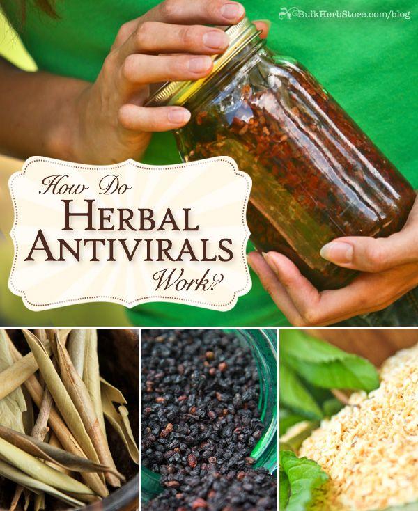 How Do Herbal Antivirals Work. Brought by https://www.facebook.com/AmazingHerbsandOils