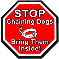 ...: Chains Dogs, Fur Friends, Chainfr Bristol, Dogs Week, Families, Fur Baby, Boxers Mom