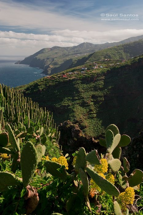 Costa de Garafia, La Palma