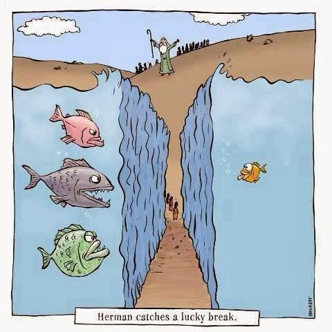 Funny Moses Red Sea Cartoon