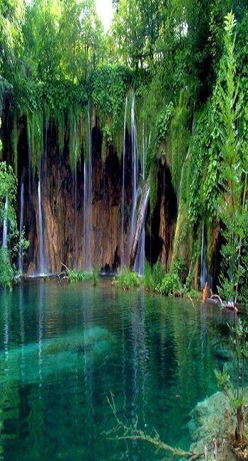 The water is so pretty, I love how it streaming down into the bottom. ~ Garajonay National Park, Spain #MediumMaria