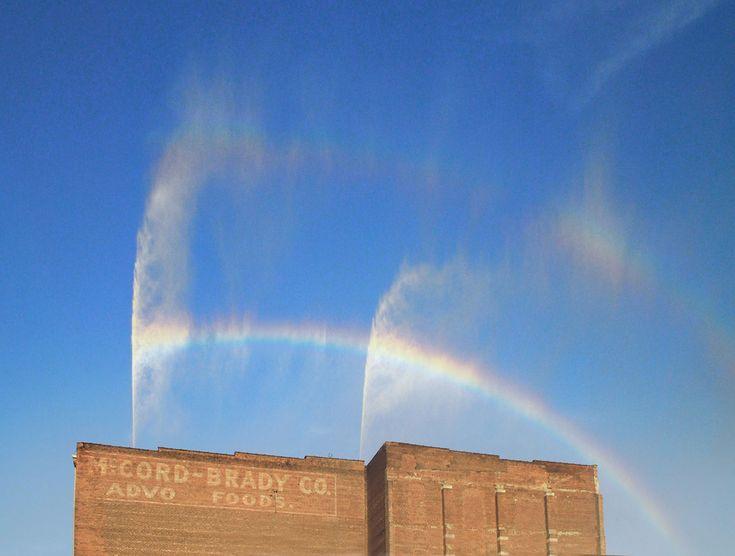 The Rainbow – Michael Jones McKean