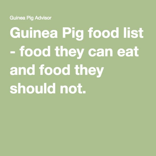 List Of Food Guinea Pigs Can