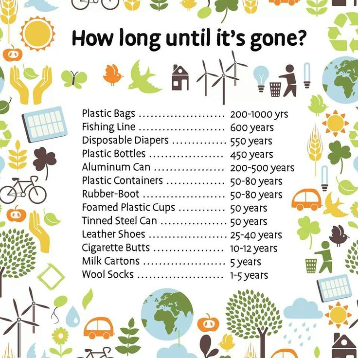 Timeline for decomposition of common waste materials