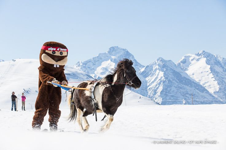 Ski Joering - Alpe d'Huez