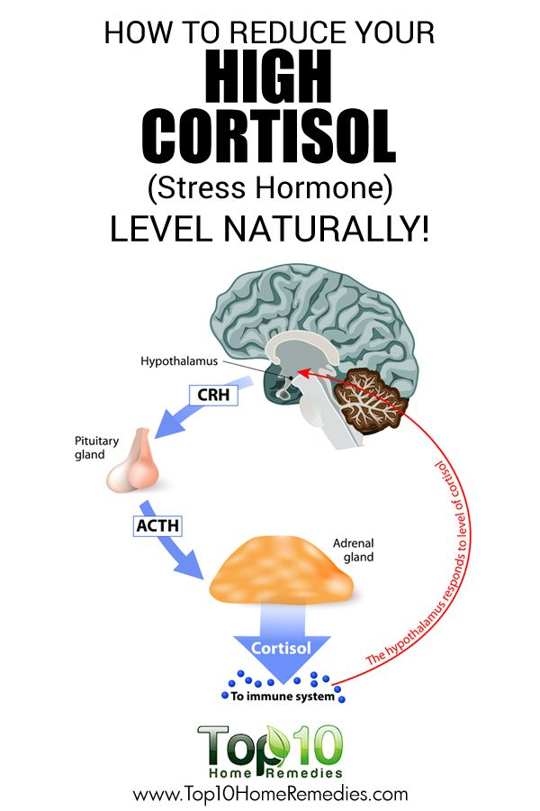 How to Reduce Your High Cortisol (Stress Hormone) Level Naturally!