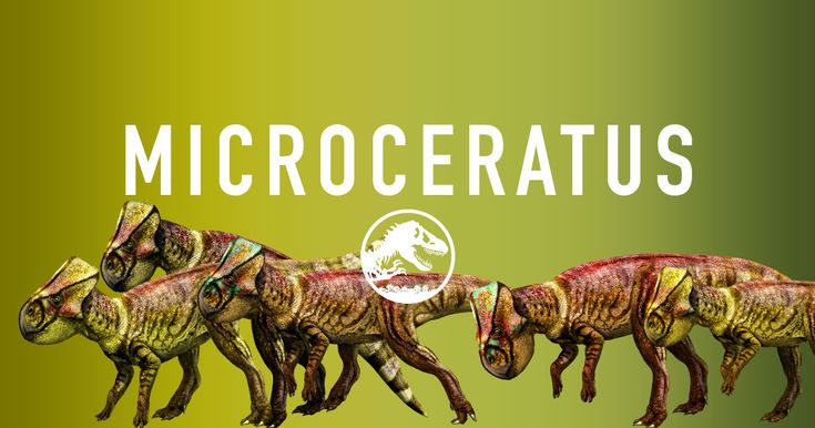 Jurassic World - Microceratus may be the smallest dinosaurs in Jurassic World. They have short frills and beak-shaped mouths perfect for snapping off leaves and twigs.