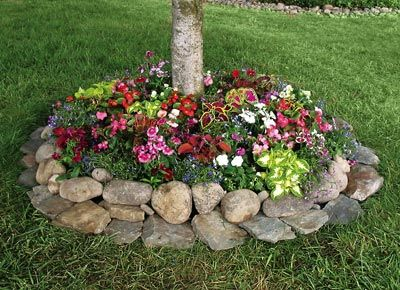 Flowers and rocks around tree. Would love to do this!Trees Rings, Gardens Ideas, Landscape Around Tree, Seeds Mats, Outdoor, Front Yards, Flower Beds, Rocks, Backyards
