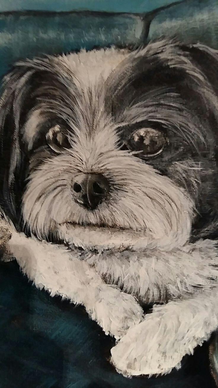 A commissioned piece. . Portrait of a gorgeous little pooch.