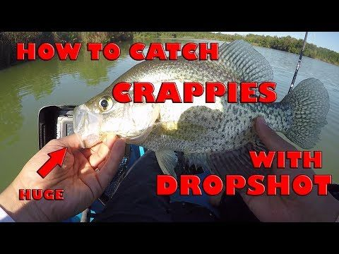 Drop Shot Fishing for Deep Crappie and Bluegill - YouTube
