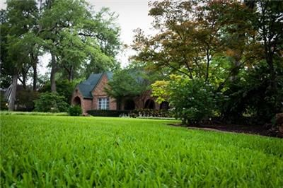 What is the Best Lawn Treatment Service?