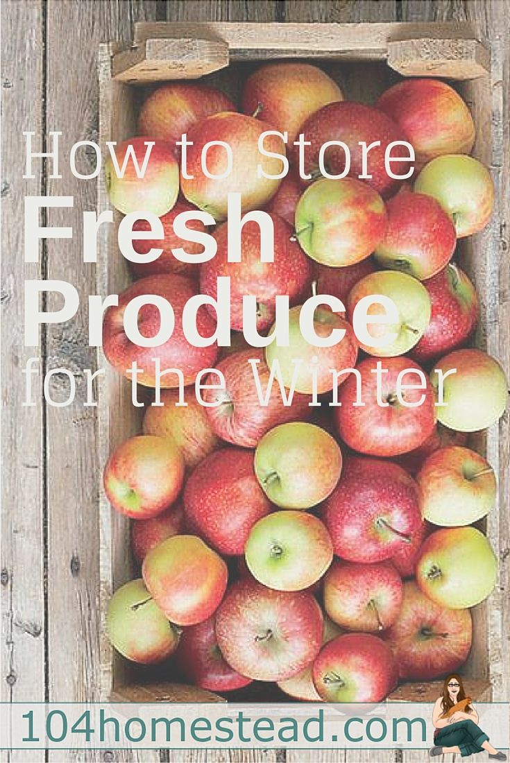 How to Store Fresh Produce for Winter                                                                                                                                                                                 More