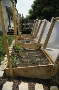 Covered raised beds -- Mini Greenhouse