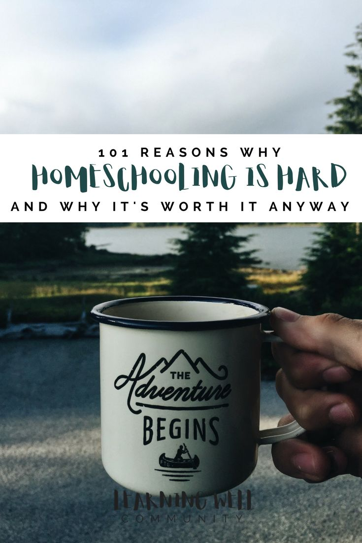 101 REASONS WHY HOMESCHOOLING IS HARD...AND WHY IT'S SO WORTH IT ANYWAY - LEARNING WELL COMMUNITY