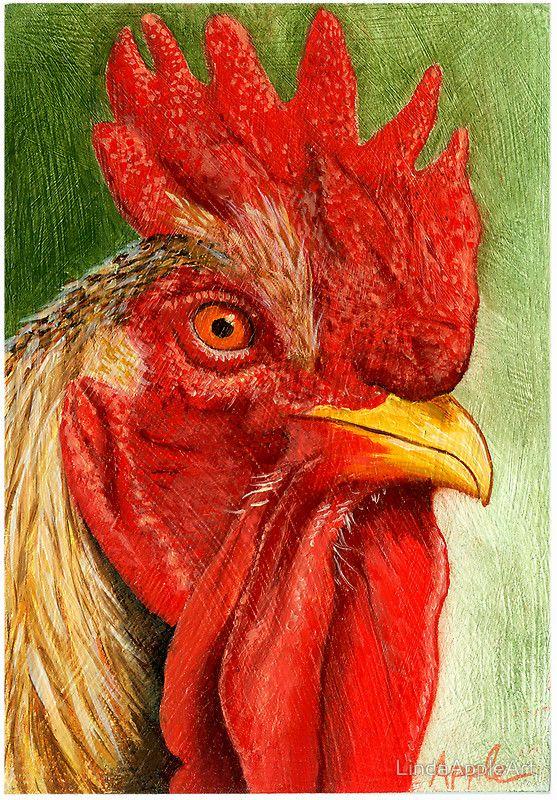 """""""Gallo"""", óleo sobre masonite animal arte citado en: """"First Things"""": http: //www.redbubble.com/groups/first-things/featured_works 9/11/09 – """"El arte Close"""": http: // www .redbubble.com / grupos / arte de cerca El primer pollo / gallo que alguna vez pensé que hacer un retrato. Era uno de mis amigos gallos mascotas. Utilizo para tener unas gallinas hace muchos años y siempre pensé que eran criaturas muy entretenidas y divertidas. Por supuesto que tenía que nom..."""