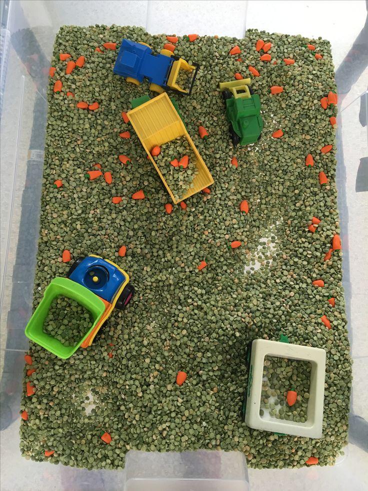 Experimenteerbak met spliterwten, wortelen van fimo en vrachtwagens