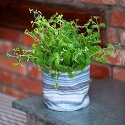 Grow-in selvvanningsbag med krydderurter