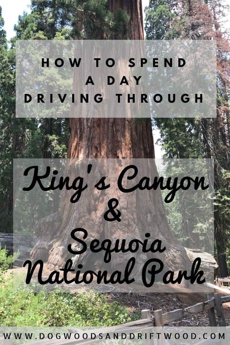 One Day in King's Canyon and Sequoia National Parks
