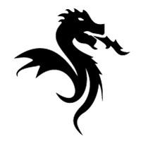 black dragon fc porto