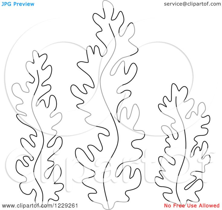 submerged vbs seaweed twilight saga coloring pages templates seaweed wrap colouring pages role models printable coloring pages