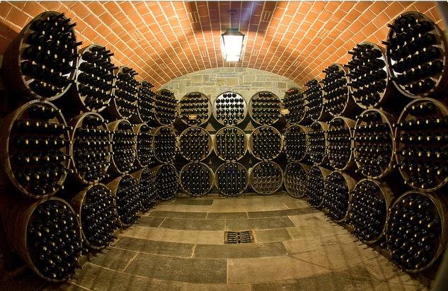 Endless supply of #wine. Mmm..  Il Borro Estates Wine Cellar