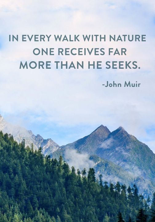 """In every walk with nature one receives far more than he seeks."" — John Muir"