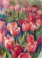 Pink Tulips by Jennifer Bowman