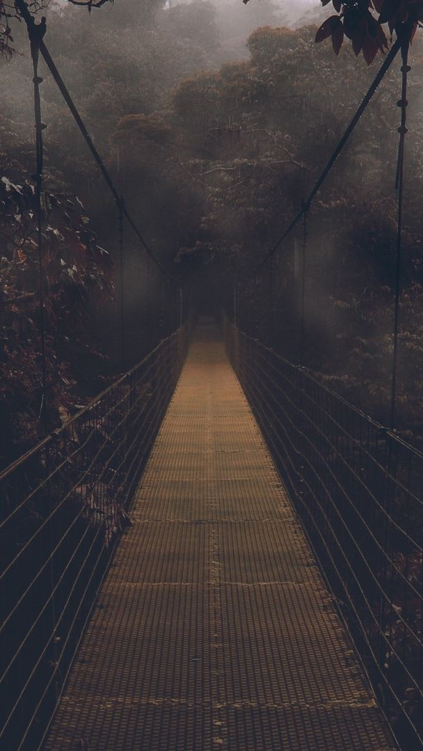 Dark Forest Bridge Wallpaper Iphone Wallpaper Dark Phone Wallpapers Screen Savers Wallpapers Backgrounds Screen Savers Wallpapers