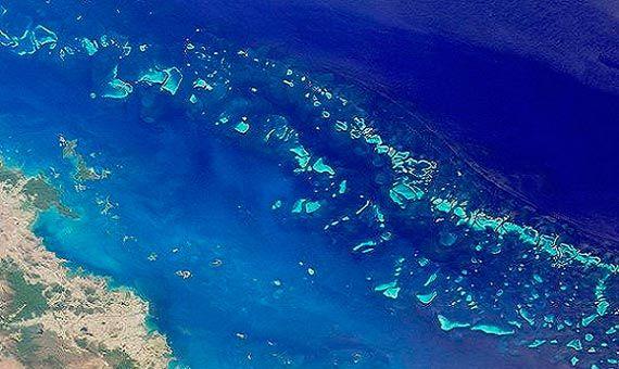 La Gran Barrera de Coral: la historia de una maravilla natural