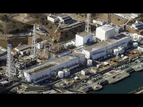 The Media Can No Longer Hide the Truth About Fukushima — the Entire World is in Danger | Humans Are Free
