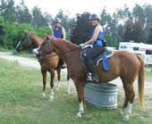 8 Tips That Can Help You Form A Bond With Your Horse. I need to start getting creative, these 2 new guys I picked up and tough cookies. Time, we need lots and lots and LOTS of time. :)