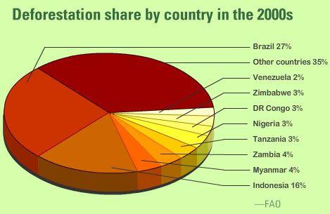 Deforestation countries