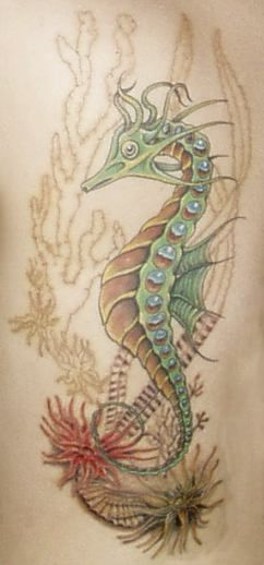 Love the colors and the aquatic plants & coral. A little more color in the coral would be good. Not a fan of the Seahorse features necessarily.