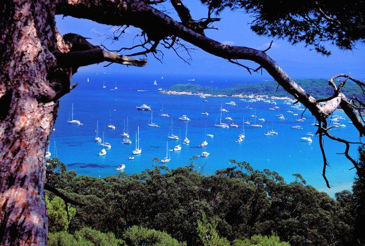 Porquerolles, Îles d'Hyères