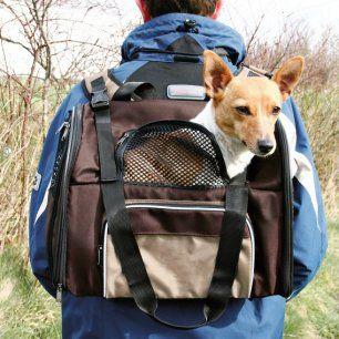 Sac de transport à dos shiva pour chien ou chat
