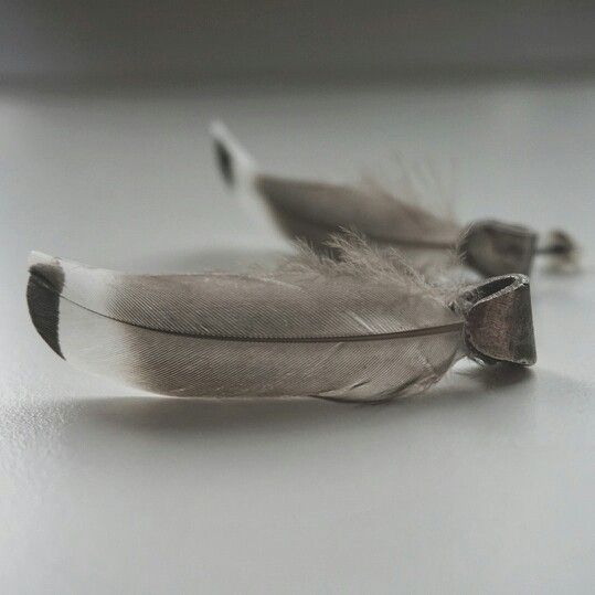 Ear rings in oxidized silver and feathers. Boho, bohemian, contrasts.