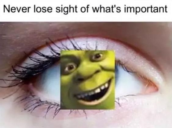 """This important piece of advice. 