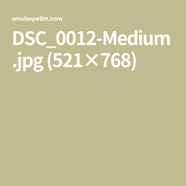 DSC_0012-Medium.jpg (521×768)