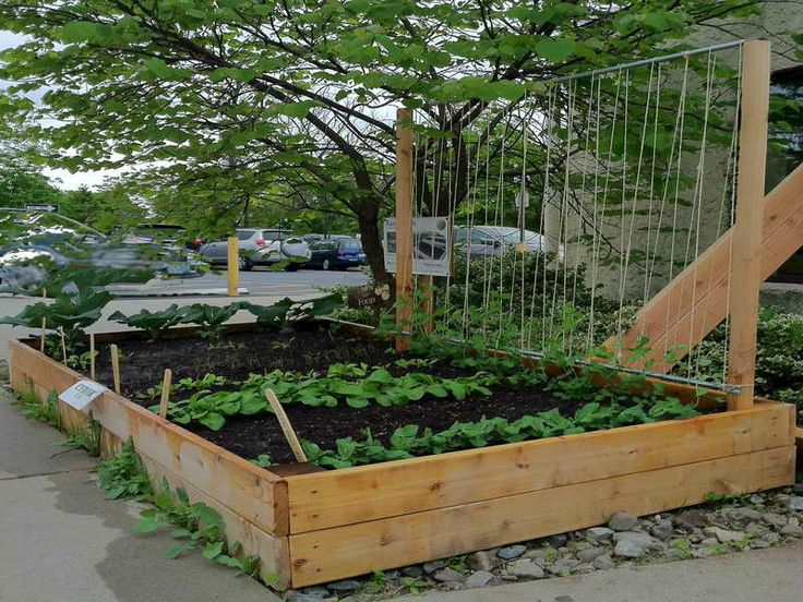 17 Best Images About Trellis On Pinterest Do It Yourself 640 x 480