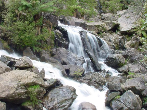 St Columba Falls in the north east of Tasmania.  Article by Gina Scott and photo by Dan Fellow.