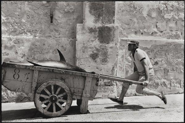 Leonard Freed (Brooklyn, 23 ottobre 1929 – Garrison, 29 novembre 2006): Sicilia, 1975