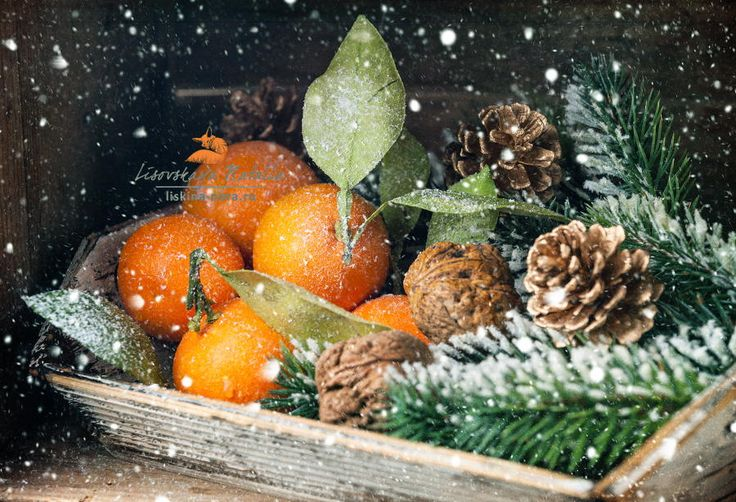 мандарины - Mandarins with leaves and Fir branch on wooden background