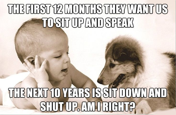 baby humor | Funny Baby Quotes - HypeHumor |||| Yes